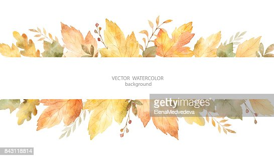 Aquarell Herbst Vektor-Banner aus Blättern und Zweigen, die isoliert auf weißem Hintergrund. : Vektorgrafik