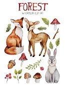 Watercolor clipart with cute forest elements. Fox , dear and hare with nature elements like mushrooms,branches and leafs.