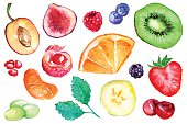 Watercolor exotic fruit berry slice set isolated vector.