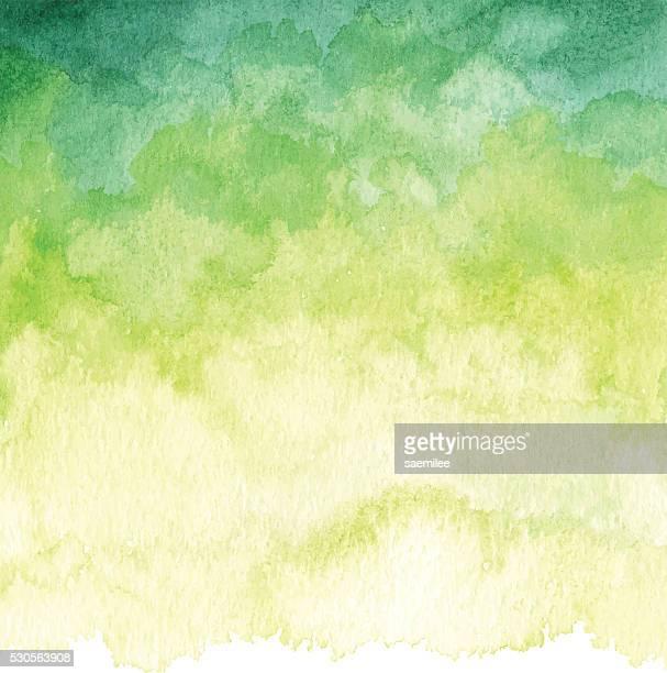 Aquarelle fond vert