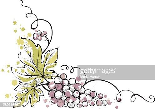 Ilustração em Aquarela -- cacho de uvas : Arte vetorial
