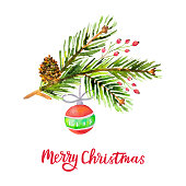 Watercolor Merry Christmas background with pine branches, cone, holly berries, Christmas ball isolated on white background. Holiday floral design. Vector illustration.