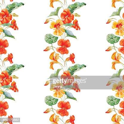 Watercolor nasturtium flower pattern : stock vector