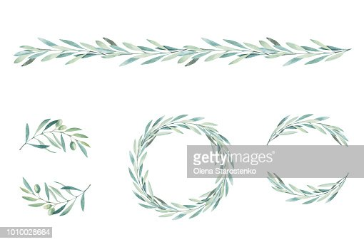 Watercolor olive branch. Sketch of olive branch on white background : stock vector