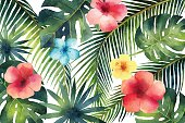 Watercolor vector banner tropical leaves and branches isolated on white background. Illustration for design wedding invitations, greeting cards, postcards.