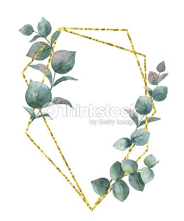 Watercolor Vector Composition From The Branches Of Eucalyptus And ...