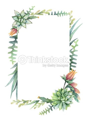 Watercolor Vector Frame Of Cacti And Succulent Plants Isolated On ...