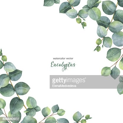 Watercolor Vector Green Floral Card With Silver Dollar