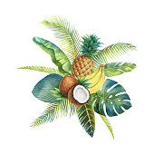 Watercolor vector organic bouquet of fruits and palm trees isolated on white background. Hand painted illustration for design kitchen, bio food, menu, healthy eating, market.
