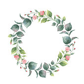 Watercolor hand painted vector wreath with eucalyptus and pink flowers. Healing Herbs for cards, wedding invitation, posters, save the date or greeting design.