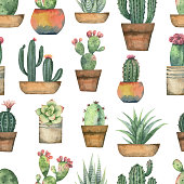 Watercolor vector seamless pattern of cacti and succulent plants isolated on white background. Flower illustration textile, paper and other print and web projects.