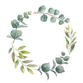 Watercolor vector wreath with green eucalyptus leaves and branches. Spring or summer flowers for invitation, wedding or greeting cards.