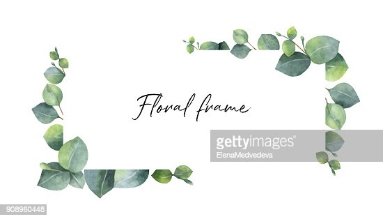 Watercolor vector wreath with green eucalyptus leaves and branches. : stock vector