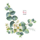 Watercolor vector wreath with green eucalyptus leaves and Jasmine. Spring or summer flowers for invitation, wedding or greeting cards.