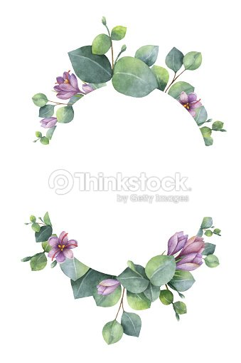 Watercolor Vector Wreath With Green Eucalyptus Leaves Purple Flowers
