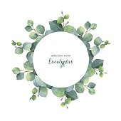 Watercolor vector hand painted wreath with silver dollar eucalyptus leaves and branches. Healing Herbs for wedding invitation, posters, save the date or greeting design.