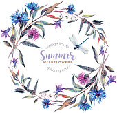 Watercolor floral wreath made of wildflowers. Drawn meadow field flowers: cornflowers, bells, thistles, willow leaves, wild herbs and dragonfly isolated on white background. Realistic illustration in
