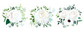 Wedding white flowers vector design bouquets.Hydrangea, rose, anemone, ranunculus, chrysanthemum,eucalyptus, greenery.Floral border composition.Trendy watercolor.All elements are isolated and editable