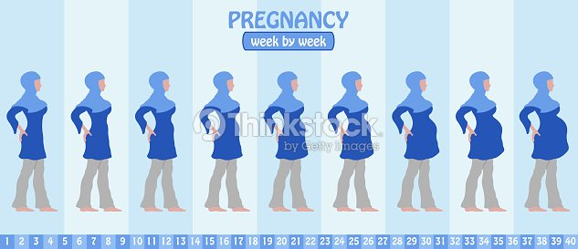 Semana En Etapas De Embarazo La Semana De La Mujer Musulmana ...