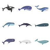 Whale blue tale fish icons set. Flat illustration of 9 whale blue tale fish vector icons isolated on white