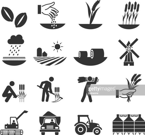 wheat harvest growth and equipment black & white icon set