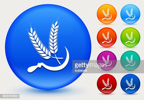 Wheat Icon on Shiny Color Circle Buttons : Vektorgrafik