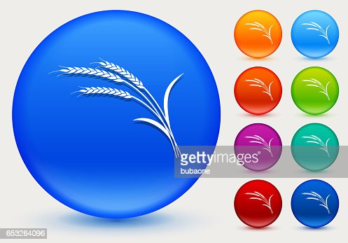 Wheat Icon on Shiny Color Circle Buttons : Vector Art