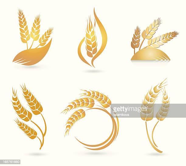 Wheat Logos
