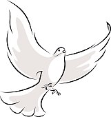 Line Art Vector Illustration Of A Flying White Dove.
