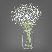 White flowers bouquet. Gypsophila flowers. Transparent clear glass jar. Grey background. Vector Illustration.