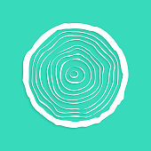 white tree rings with shadow. concept of saw cut tree trunk, forestry and sawmill. isolated on green background. design trendy modern vector illustration