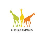 Wild Africa animal stylized icon. Giraffe colorful silhouette icon.