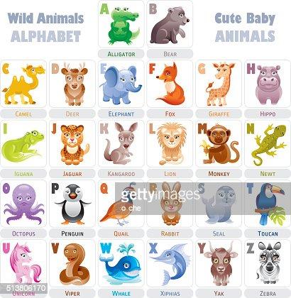 アルファベット野生動物の赤ちゃん : ベクトルアート