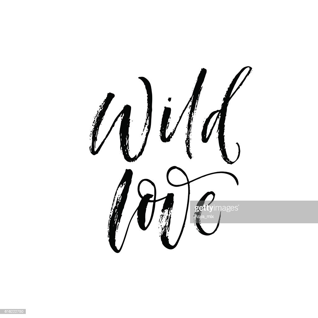 Wild love phrase. : Vector Art
