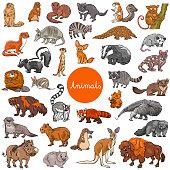 Cartoon Illustration of Wild Mammals Animal Characters Big Set
