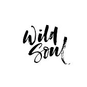 Wild soul card. Vector lettering art. Hand drawn lettering phrase. Ink illustration. Modern brush calligraphy. Isolated on white background.