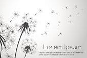 Wind blowing dandelions seeds for cards decor vector illustration