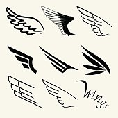 Wings set on white background, vector