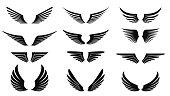 vector image of simple wings