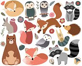 Vector set of cute woodland animals and design elements.