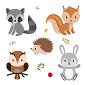 Woodland animals and decor elements set. Vector illustration isolated on white background.