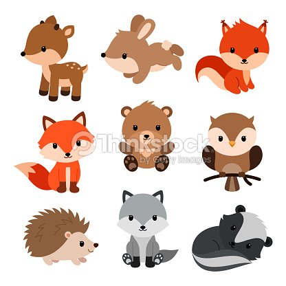 Woodland animals set. : stock vector