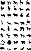 set of silhouettes of different animals, volume 1