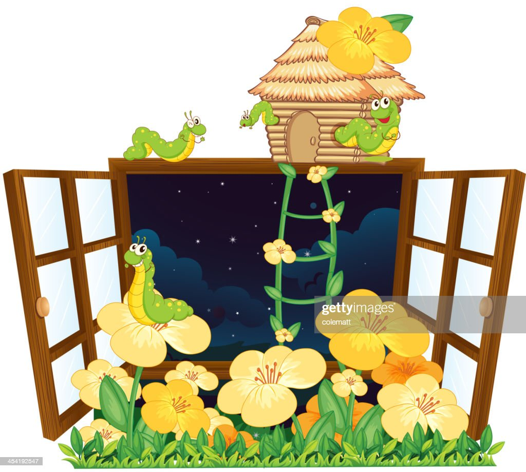 Worms, bird house and window : Vector Art
