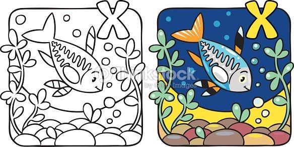 X Ray Fish Coloring Book Alphabet Vector Art