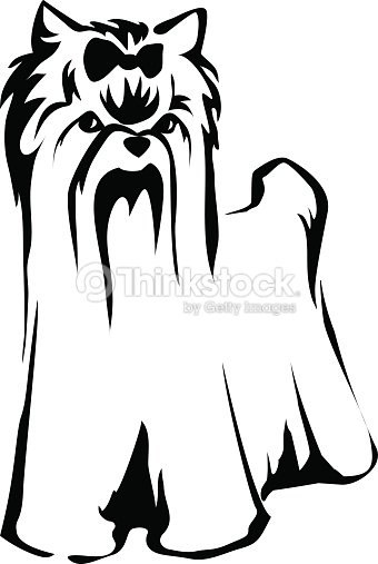 Yorkshire terrier dog vector art