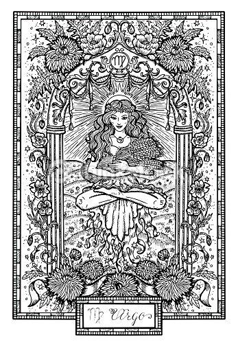 Signe Du Zodiaque Vierge Ou Vierge Avec Les Asters Et Les Fleurs De