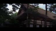 MEDIUM SHOT JAPANESE FLAG HUNG ON PALM TREE.