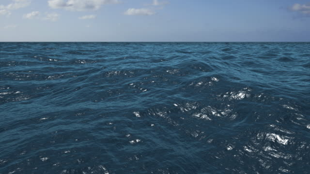 REAL OCEAN HD LOOP