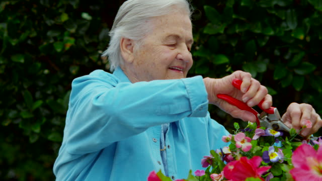 ELDERLY WOMAN TRIMMING FLOWERS